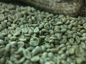 Green Coffee in Burlap